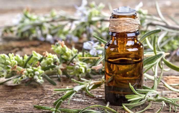 Blog Faunus Plant - 2 Tratamente pe bază de rozmarin pentru păr și scalp