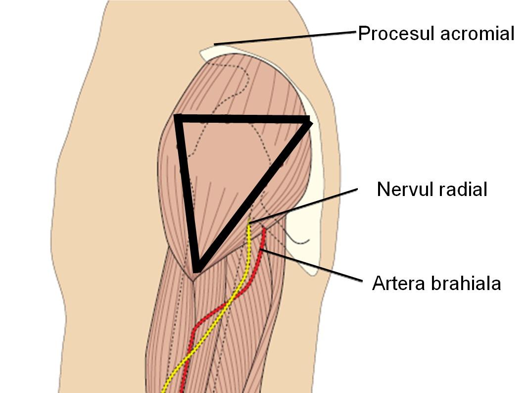 pastile hormonale pentru durerile articulare