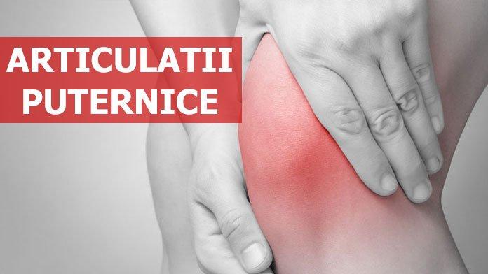 Sprint Cartilage Repair cps. x 30 culturismul și artroza umărului
