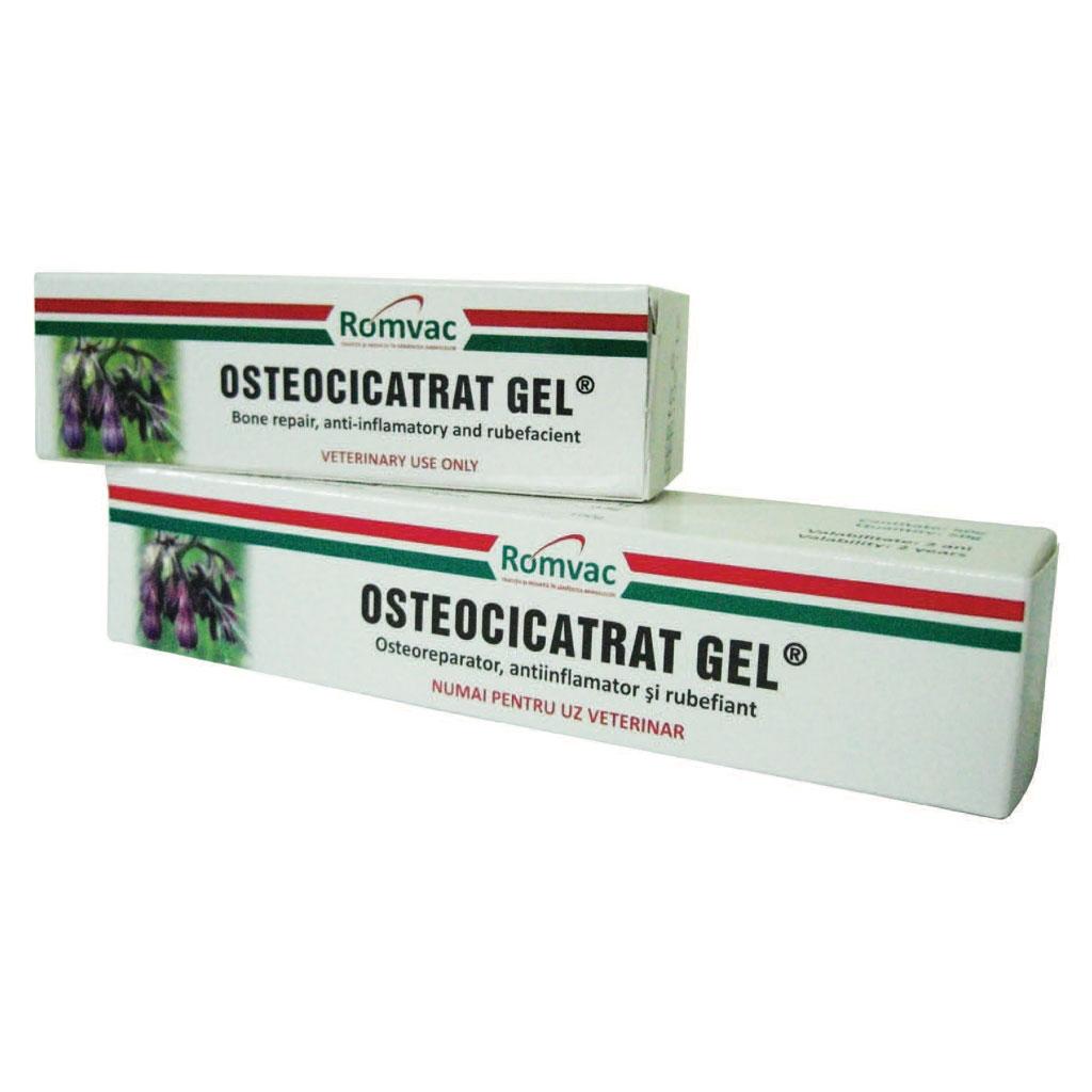 gel sau unguent de osteocondroză