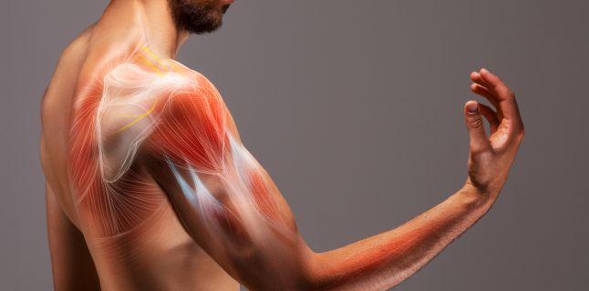 Tratamentul slab al articulațiilor ligamentare. Hipermobilitatea articulară (laxitatea ligamentară)