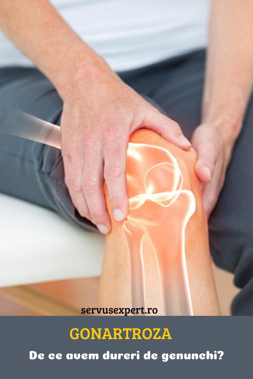 8 Best Gelatină images in | Gelatină, Articulații, Tratamente naturale Tratament articular frumos