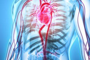 boala sistemului cardiovascular și articulațiilor