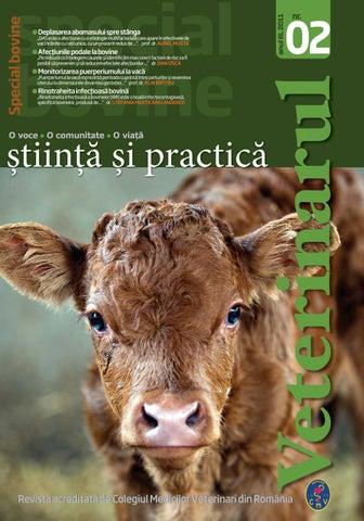 tratamentul articulațiilor biliare bovine