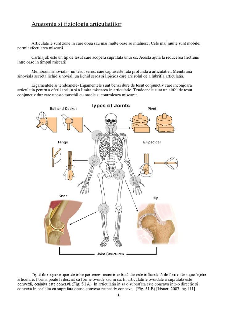 tratament articular kizner capsula durerii articulare