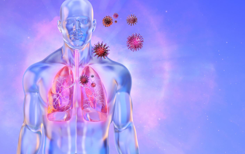 tratamentul artrozei matsesta