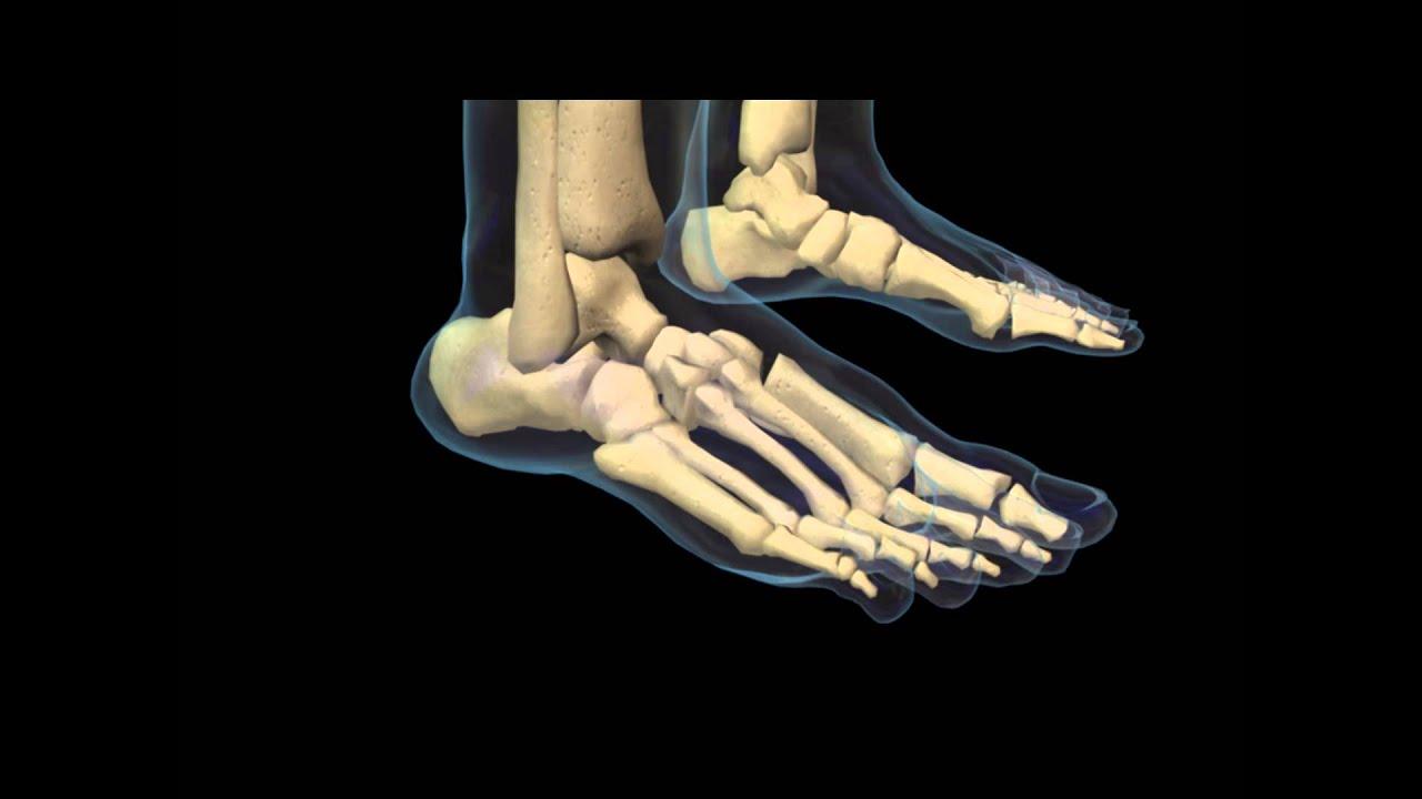 zdrobește articulația piciorului și doare tratamentul intern al artritei cu artrita