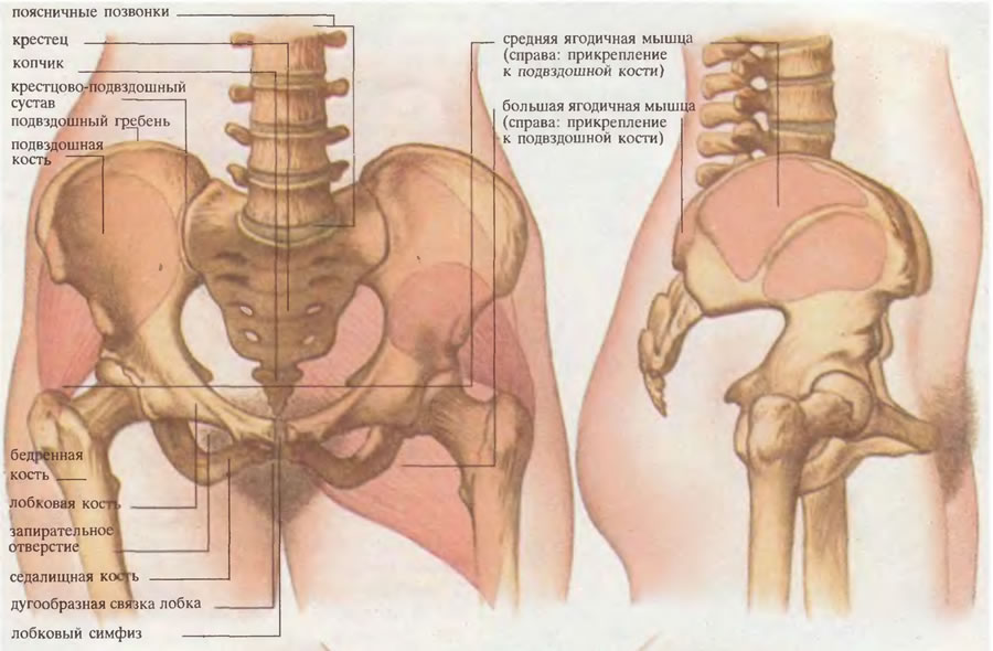 dureri la nivelul articulațiilor sacroiliace