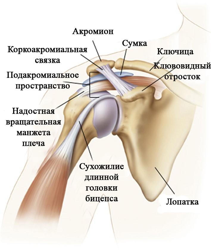 лечение плечевой связки
