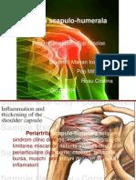 tratament articular periartrita
