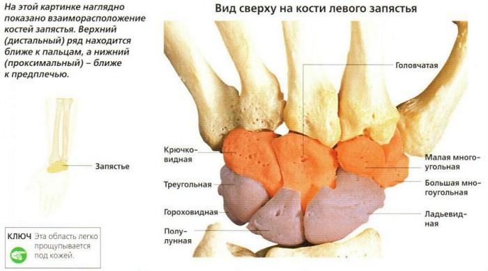ce determină rănirea articulației încheieturii?