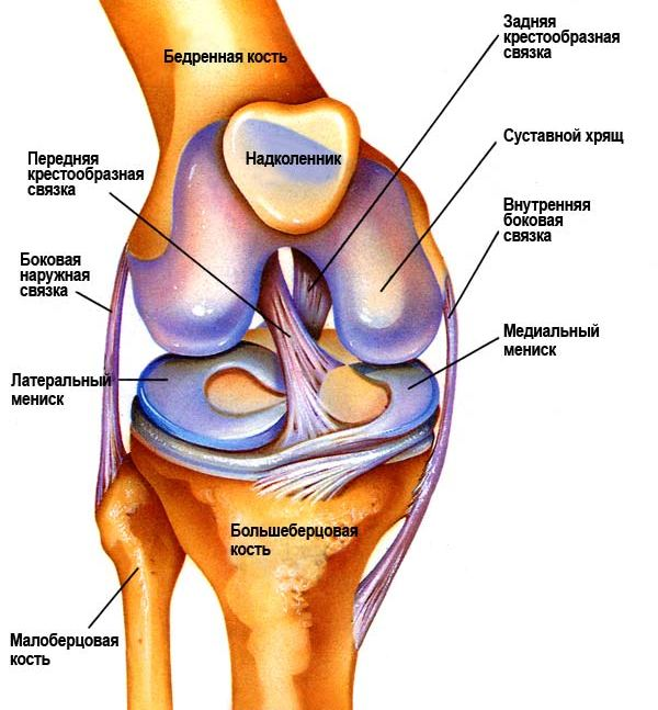 от боли в коленном суставе recenzii ale tratamentului artrozei cervicale