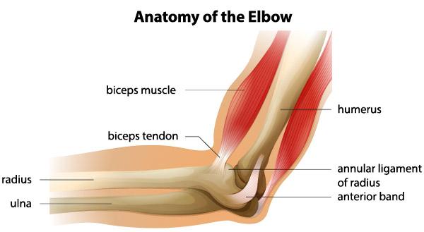 după cădere, durere în articulația cotului
