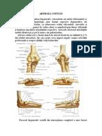 Ajutați la inflamația articulației cotului - sfantipa.ro