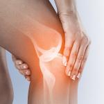 medicament pentru refacerea cartilajului în articulații