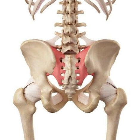 SACROILEITA: durere de spate și șold