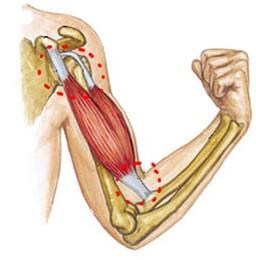 tratamentul artrozei genunchiului cu dimexid boli ale articulațiilor cotului simptome și tratament