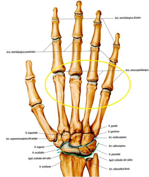 epicondilita tratamentului articulației cotului cum se tratează