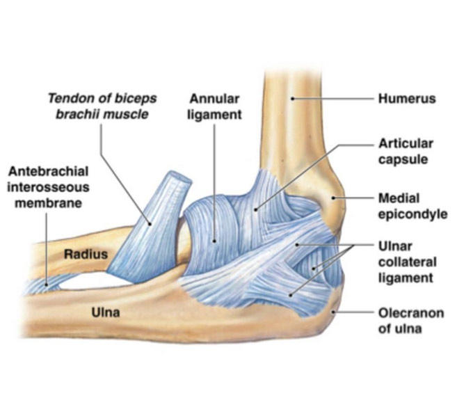 Umflarea articulației cotului: de ce și ce să faci?