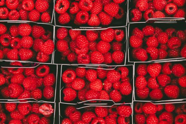 Fructe sudice pentru tratament comun. Plângeri de boli articulare