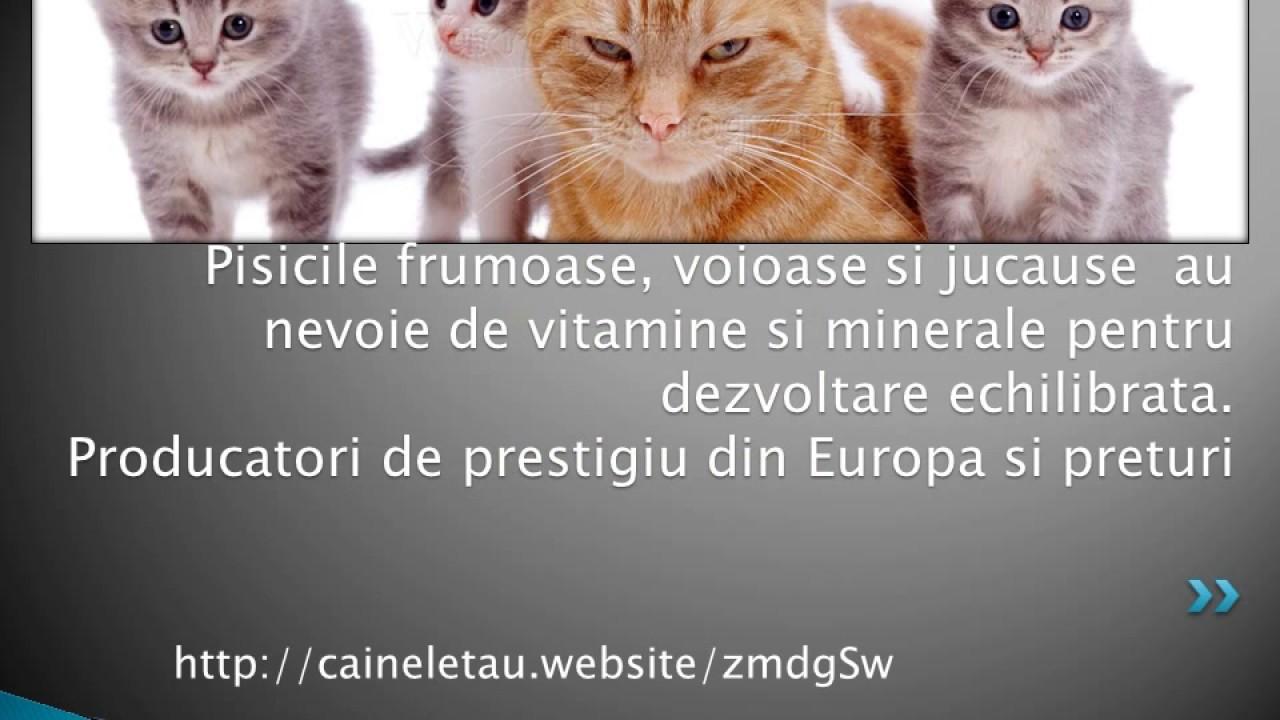 condroitină polidex glucozamină