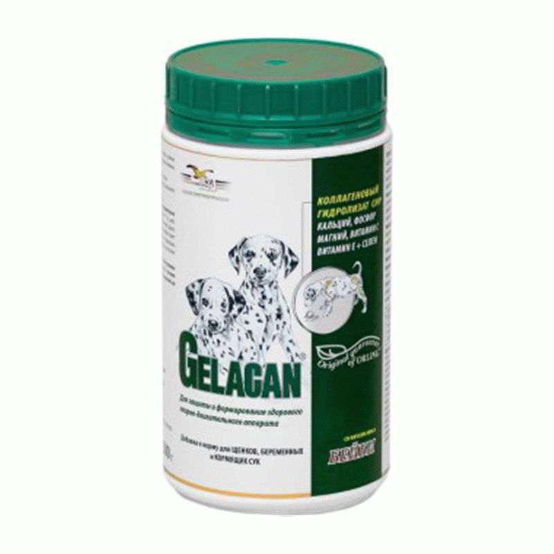 Preparate care conțin condroitină și glucozamină împreună