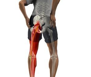 Articulațiile coapsei doare după mers, Care sunt caracteristicile durerii în fesă?