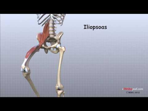 cum se tratează sinovita articulațiilor tratează artrita și artroza