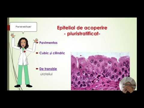 Reumatism - ceea ce este, cauze, semne, simptome, tratament și diagnostic - Rănire