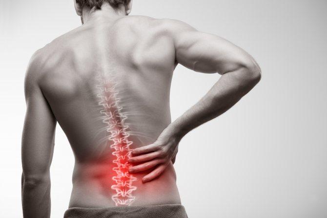 boli articulare și de spate