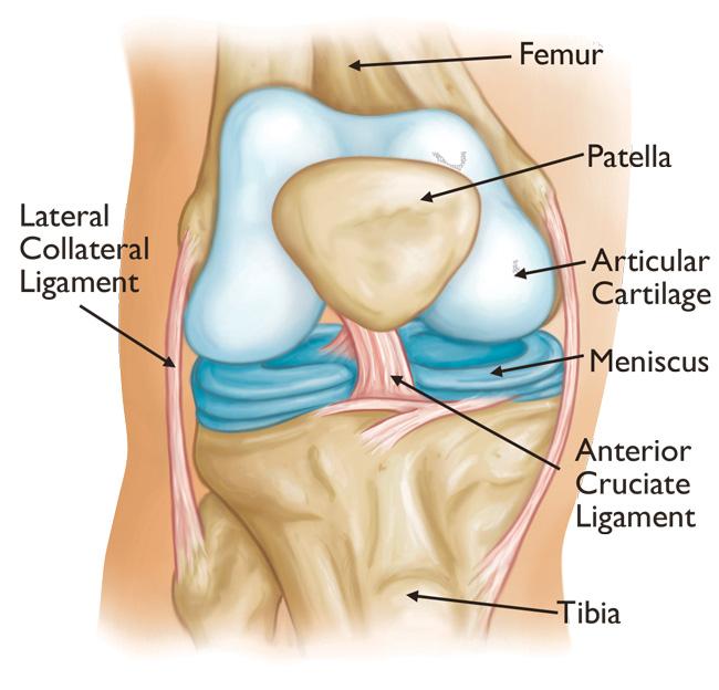 simptomele tratamentului artrozei mâinii tratament comun în teritoriul Stavropol