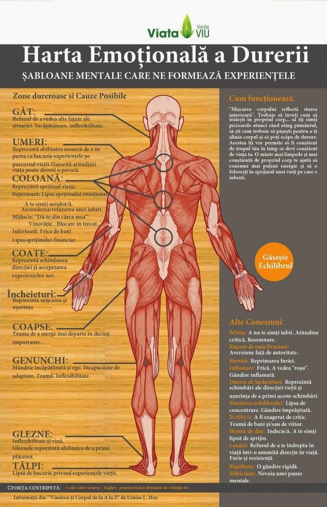 dureri de umăr psihosomatice