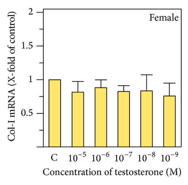 Afectiuni articulare provocate de dereglarile hormonale