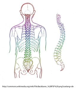 Artrita articulaţiilor zigapofizeale în regiunea lombară : sfantipa.ro