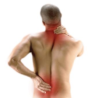 ce doare articulațiile șoldului la femei deteriorarea ligamentelor gleznei cum se aplică un bandaj