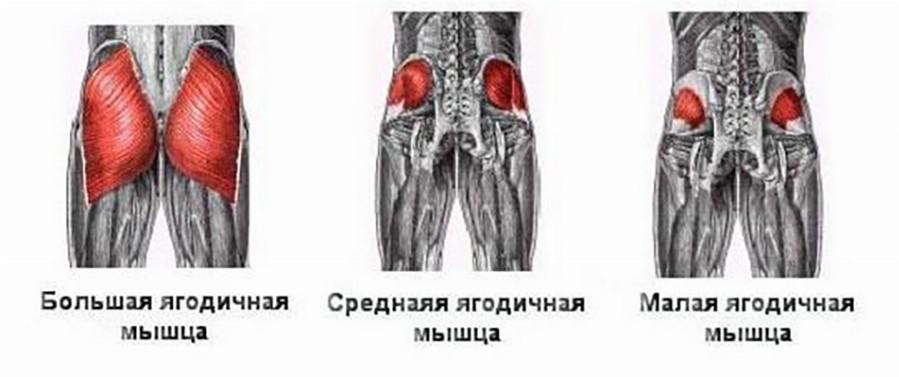 articulațiile brațelor și picioarelor pregătesc răni