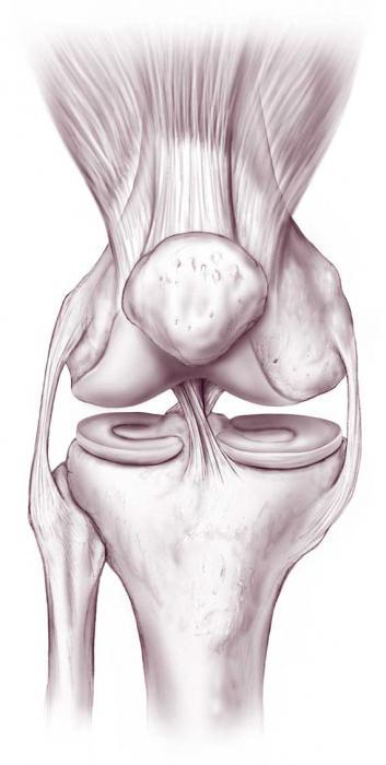 Durerea Articulatiilor - Tipuri, Cauze si Remedii, Articulațiile teraflex doare
