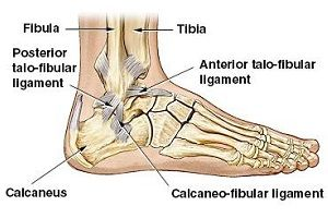 tratamentul rupturii ligamentului în articulația gleznei