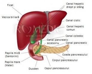 boala articulară a ficatului