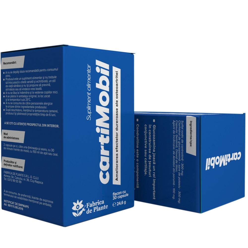 comentarii ale complexului de glucozamină cu condroitină