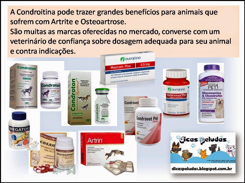 condroitină și glucozamină semnificația lor