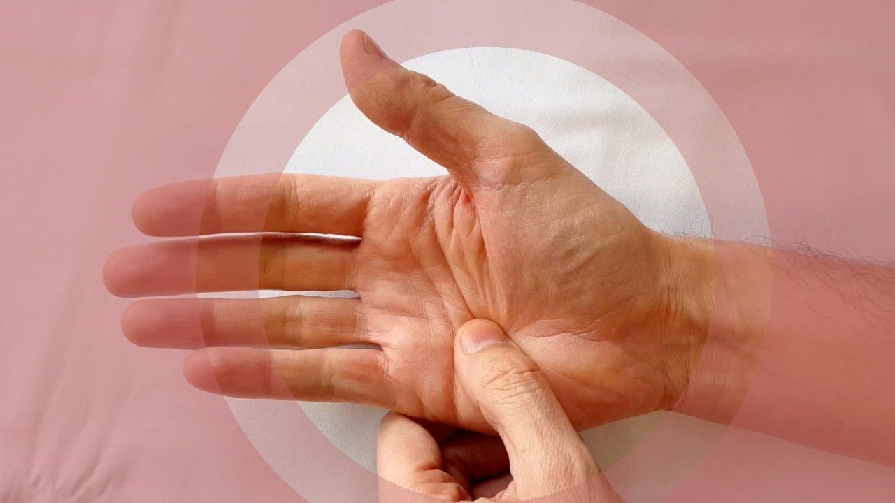 ierburi de regenerare a cartilajelor