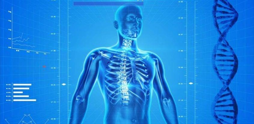 dureri de umăr nerv sau articulație medicamente pentru țesut conjunctiv
