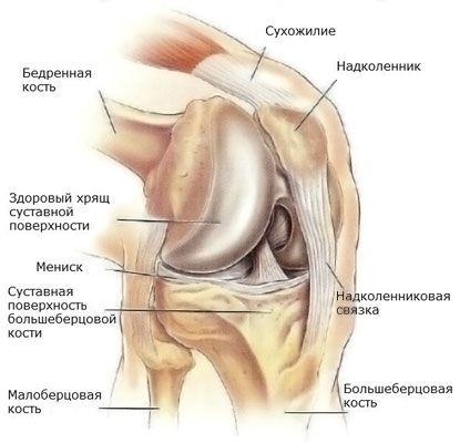 Depășește genunchiul articulației. Cum poti trata osteoartrita,