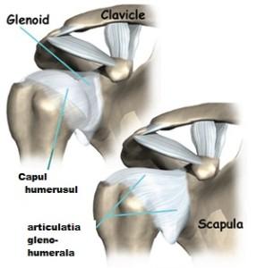 deteriorarea articulației umărului și a umerilor artroza picioarelor cum se tratează