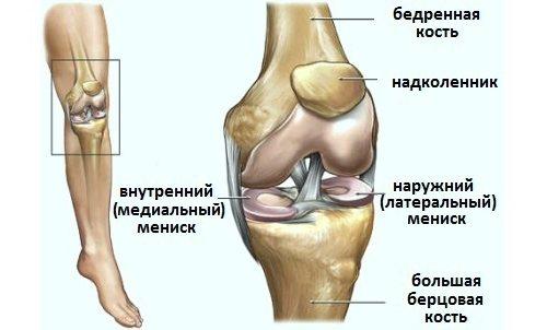 deteriorarea meniscului intern al genunchiului 3 grade