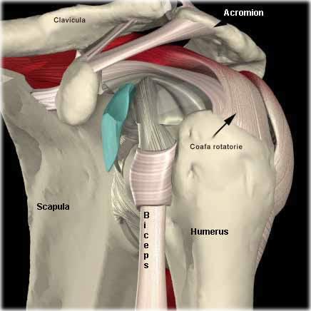 Cum să faceți injecții pentru dureri în spate și spate? - Masaj -