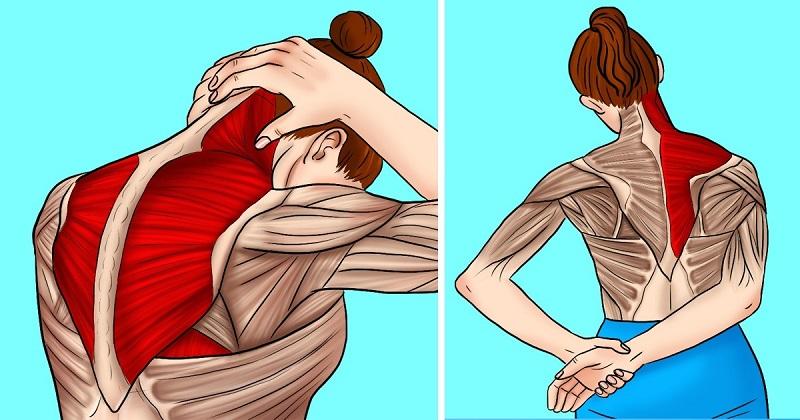 dureri de gât dureri de umăr