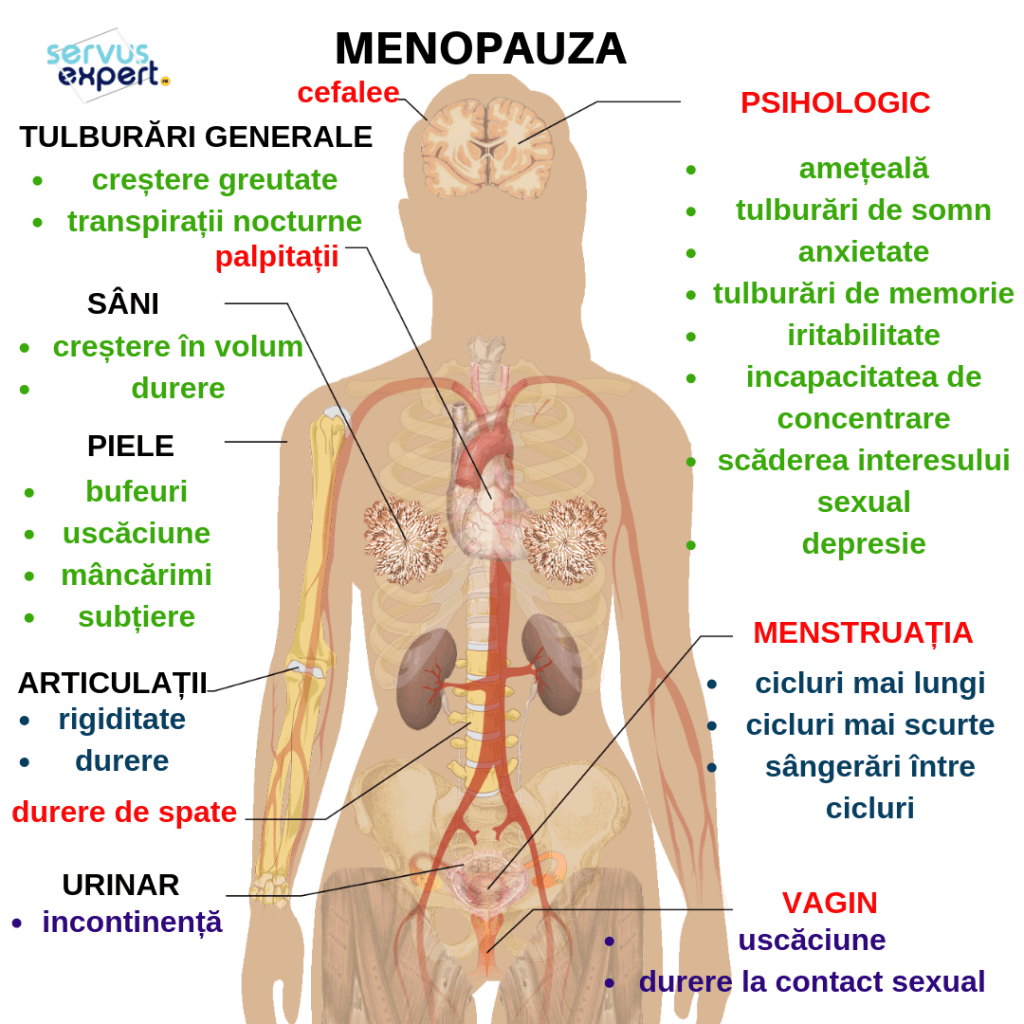 dureri severe la toate articulațiile în timpul menopauzei