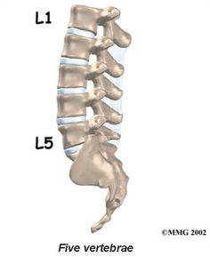 artrita articulației umărului nu doare forum de tratare a artrozei sacroiliace